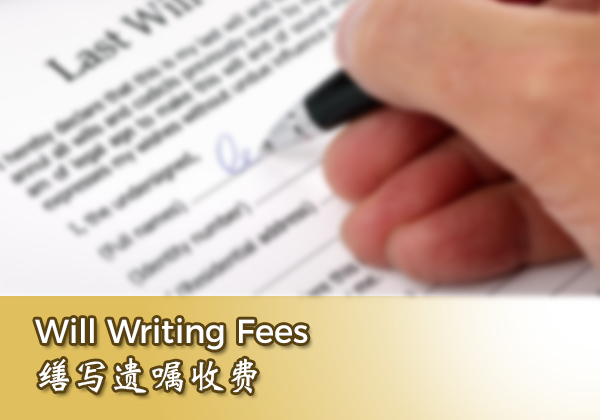 Will Writing Fees